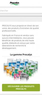 Capture d'écran du site internet mobile Procalys
